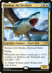 c20-14-shabraz-the-skyshark