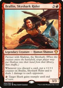 c20-4-brallin-skyshark-rider